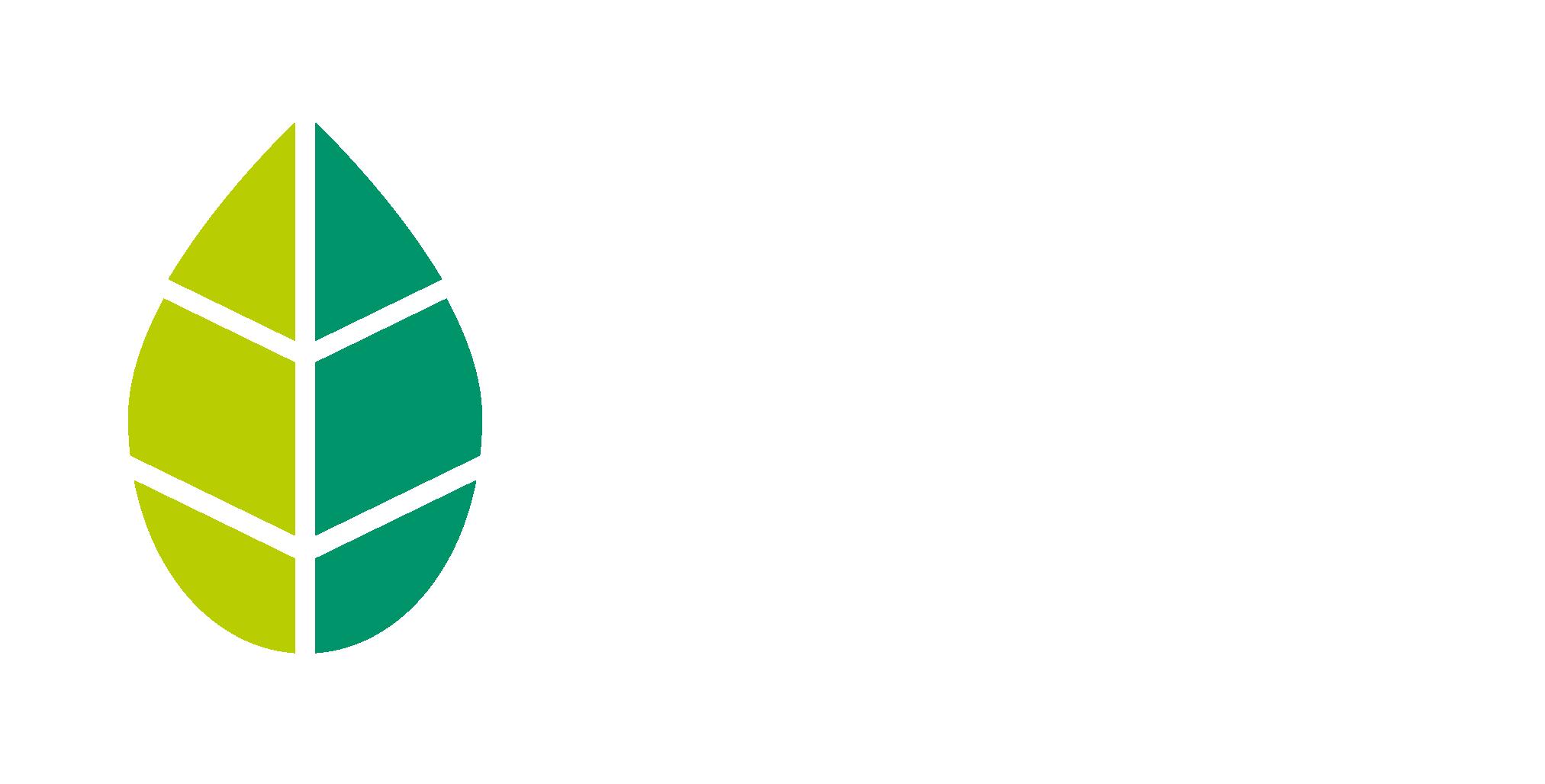Baum Braun